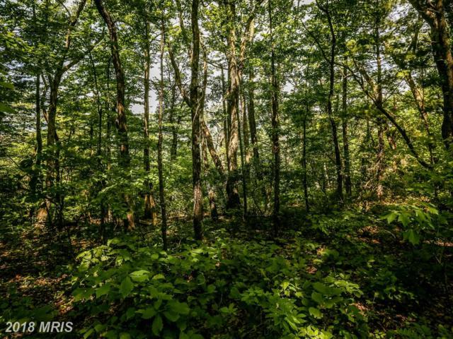 Supinlick Ridge Road, Mount Jackson, VA 22842 (#SH10274734) :: Tessier Real Estate