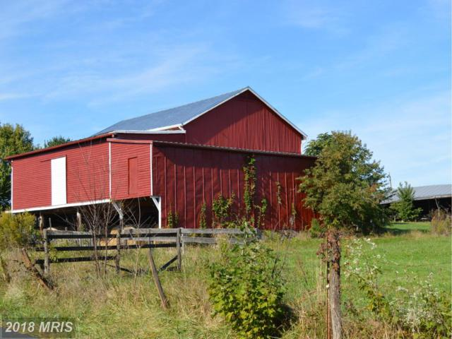 1619 Readus Road, Edinburg, VA 22824 (#SH10301553) :: Jacobs & Co. Real Estate