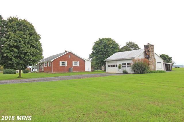 21262 Senedo Road, Edinburg, VA 22824 (#SH10355289) :: Browning Homes Group