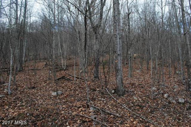 Sunrise Hill, Fort Valley, VA 22652 (#SH9848849) :: LoCoMusings
