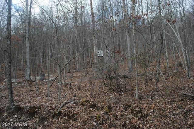Sunrise Hill, Fort Valley, VA 22652 (#SH9848867) :: LoCoMusings