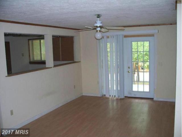 190 Longstreet Road, Basye, VA 22810 (#SH9852789) :: Pearson Smith Realty