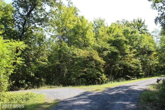 Brushleaf, Mount Jackson, VA 22842 (#SH9878296) :: LoCoMusings