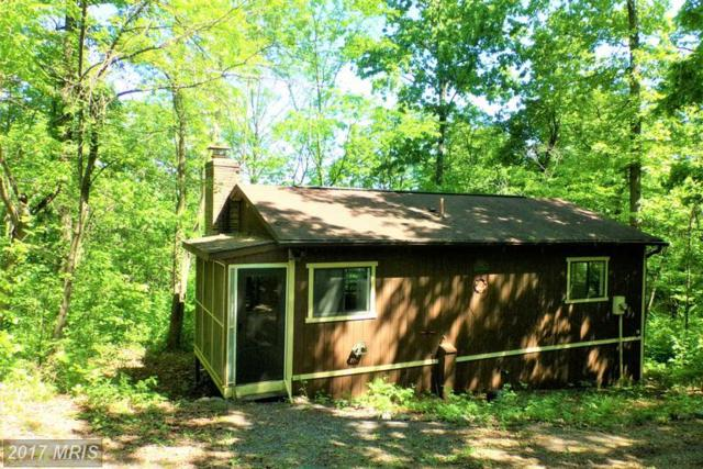 424 Hilltop Lane, Mount Jackson, VA 22842 (#SH9952612) :: Pearson Smith Realty