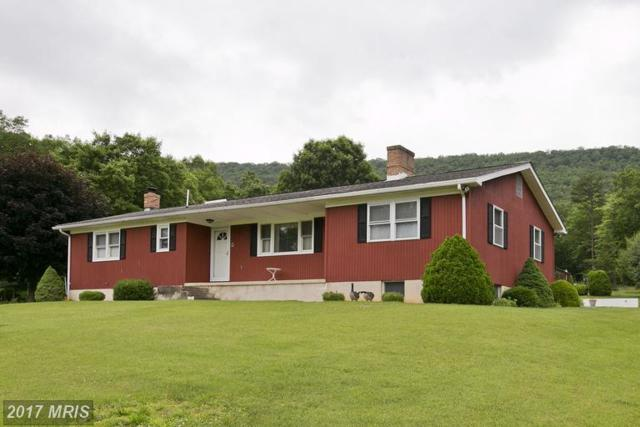 3229 Boliver Road, Fort Valley, VA 22652 (#SH9974083) :: Pearson Smith Realty