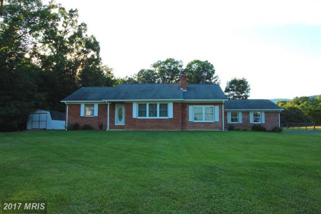 43 Piedmont Lane, Woodstock, VA 22664 (#SH9987384) :: LoCoMusings