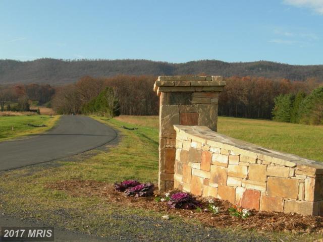 Back Road Lot # 14, Maurertown, VA 22644 (#SH9994946) :: LoCoMusings