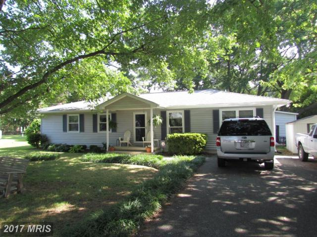 45384 Stark Drive, Piney Point, MD 20674 (#SM10009112) :: Pearson Smith Realty