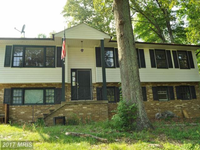 28938 Hill And Dale Drive, Mechanicsville, MD 20659 (#SM10019915) :: Pearson Smith Realty