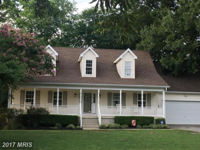 40292 Dockser Drive, Mechanicsville, MD 20659 (#SM10023374) :: Pearson Smith Realty