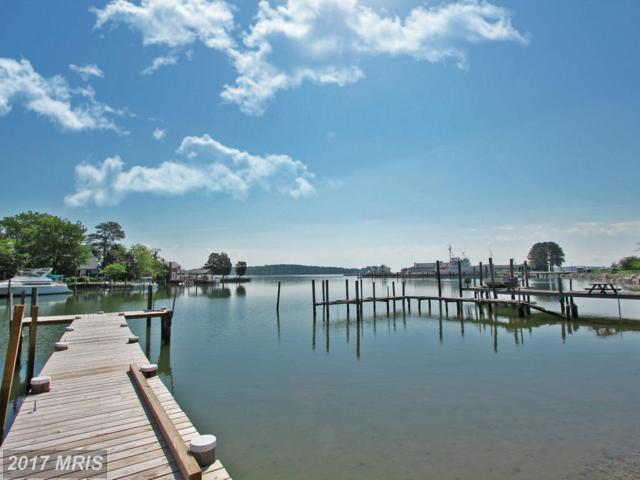 17429 Poplar Street, Piney Point, MD 20674 (#SM10038521) :: Pearson Smith Realty