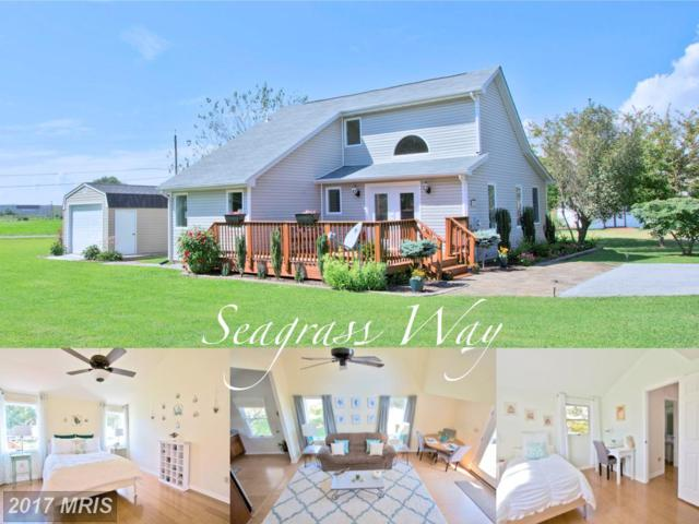 45203 Seagrass Way, Piney Point, MD 20674 (#SM10047478) :: Pearson Smith Realty