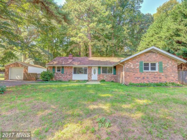 29971 Skyview Drive, Mechanicsville, MD 20659 (#SM10049950) :: Pearson Smith Realty