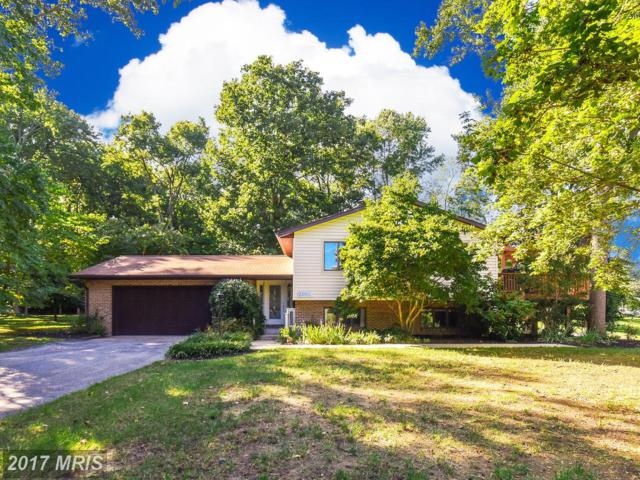 23355 Rolling Court, Lexington Park, MD 20653 (#SM10051318) :: Pearson Smith Realty
