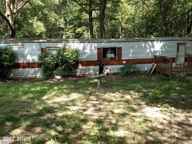 20344 Janeen Lane, Park Hall, MD 20667 (#SM10055594) :: Pearson Smith Realty