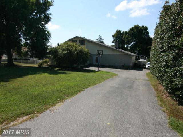 40835 Spring House Lane, Leonardtown, MD 20650 (#SM10059986) :: LoCoMusings