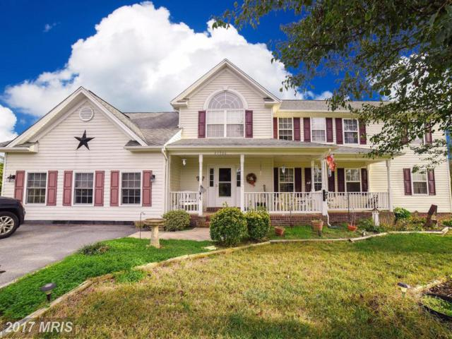 27960 Cedar Grove Street, Mechanicsville, MD 20659 (#SM10088300) :: The Vashist Group