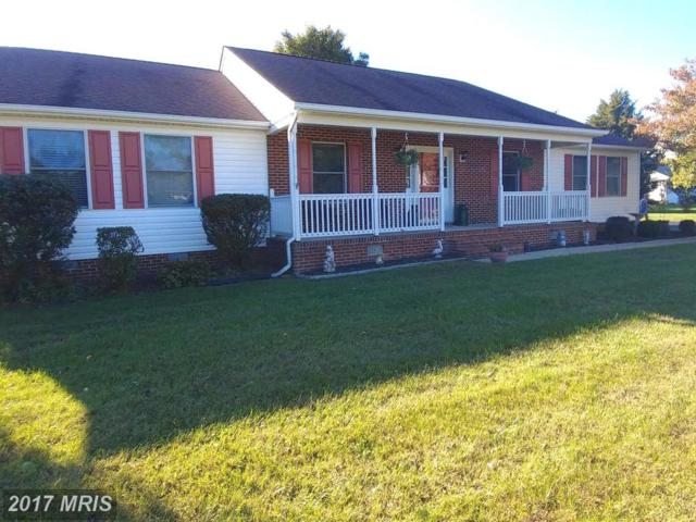 23965 Dudley Court, Hollywood, MD 20636 (#SM10088552) :: Pearson Smith Realty