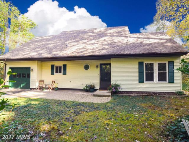 23252 Scotch Pine Court, California, MD 20619 (#SM10099751) :: Pearson Smith Realty