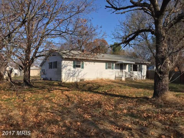 25335 Pinto Drive, Hollywood, MD 20636 (#SM10121204) :: Pearson Smith Realty