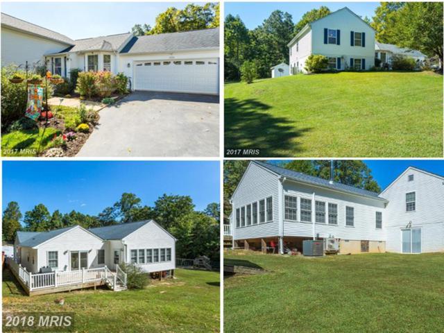 37161 Newlands Street, Mechanicsville, MD 20659 (#SM10135896) :: Keller Williams Preferred Properties