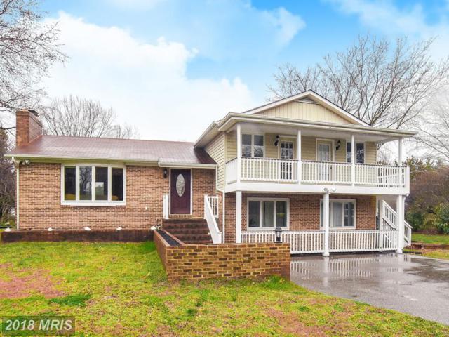 49870 Gray Goose Lane, Ridge, MD 20680 (#SM10172950) :: Keller Williams Preferred Properties