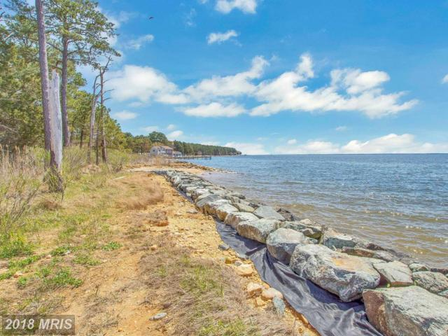 16441 Harms Way, Piney Point, MD 20674 (#SM10221944) :: The Putnam Group