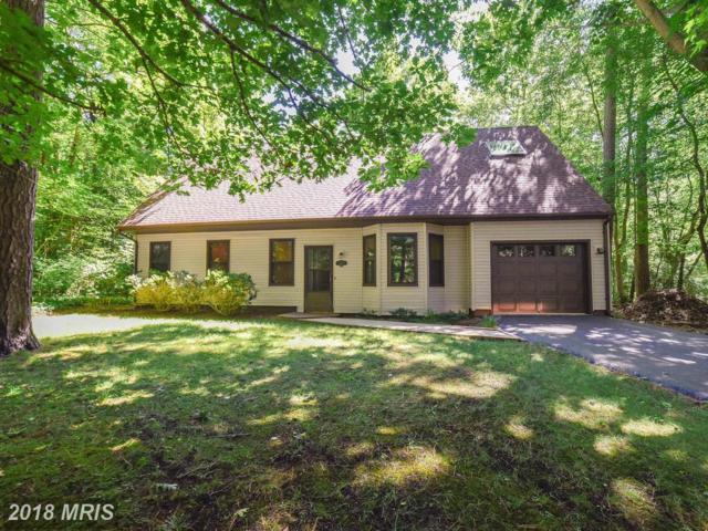 44530 White Pine Court, California, MD 20619 (#SM10293218) :: Keller Williams Pat Hiban Real Estate Group