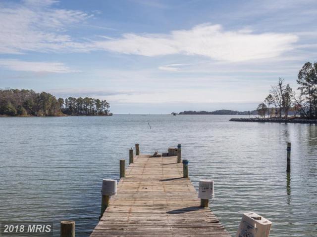 16841 Bay Creek Lane, Dameron, MD 20628 (#SM10348817) :: Keller Williams Preferred Properties