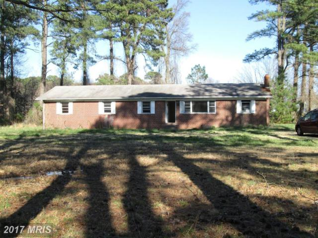 20274 Gerard Lane, Coltons Point, MD 20626 (#SM9989227) :: LoCoMusings