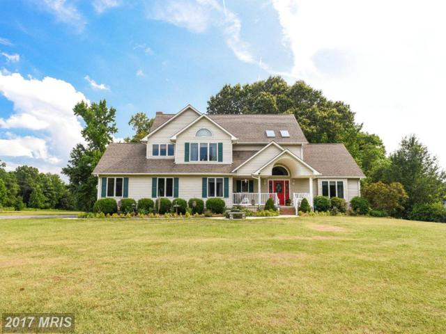 45479 Mount Olive Way, Valley Lee, MD 20692 (#SM9993107) :: Pearson Smith Realty
