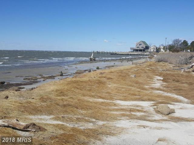 Crowell Road, Deal Island, MD 21821 (MLS #SO10126713) :: RE/MAX Coast and Country
