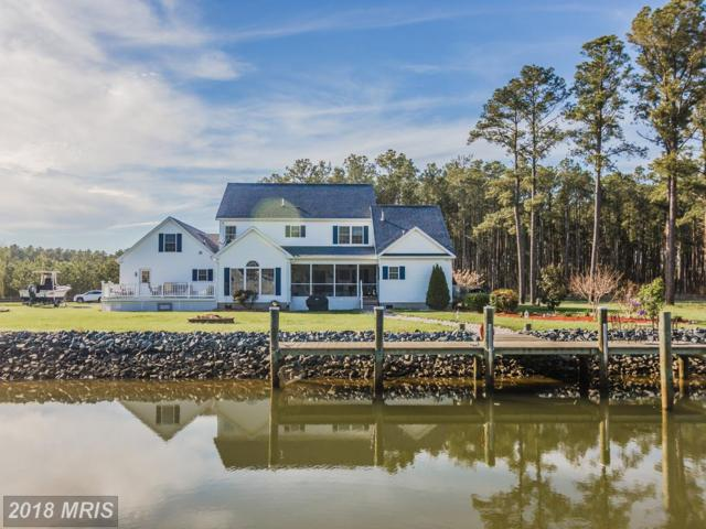5115 Thomas Long Road, Crisfield, MD 21817 (#SO10223791) :: RE/MAX Coast and Country