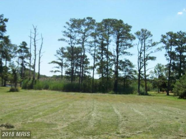 Annie Hyland Road, Princess Anne, MD 21853 (#SO10321732) :: RE/MAX Coast and Country