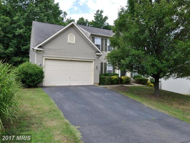 3714 Carlyle Court, Fredericksburg, VA 22408 (#SP10002136) :: Green Tree Realty