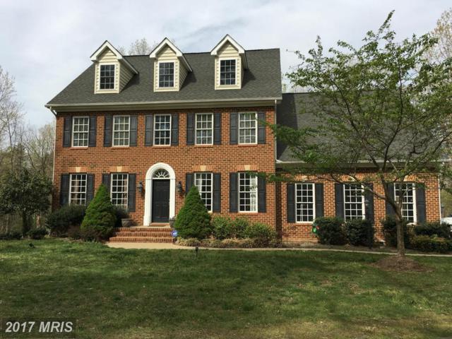 13202 Chandler Court, Fredericksburg, VA 22407 (#SP10008028) :: LoCoMusings