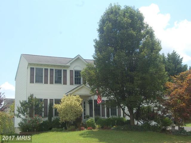 6109 Three Cedars Lane, Fredericksburg, VA 22407 (#SP10008620) :: LoCoMusings