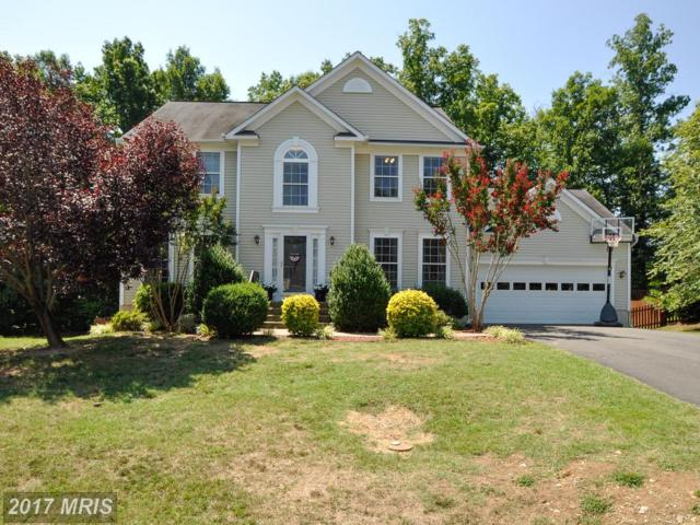 3613 Carlyle Court, Fredericksburg, VA 22408 (#SP10010865) :: Green Tree Realty