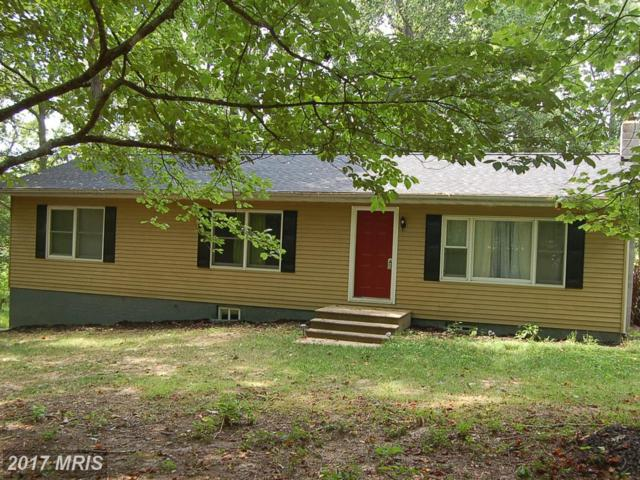 9515 Secca Drive, Fredericksburg, VA 22407 (#SP10010992) :: Green Tree Realty
