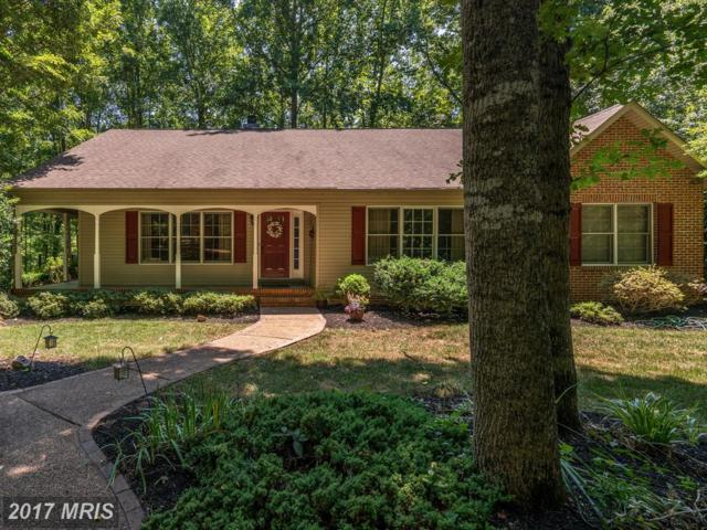 13007 Grant Court, Spotsylvania, VA 22551 (#SP10011443) :: Green Tree Realty