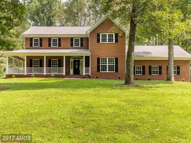 10810 Astarita Avenue, Partlow, VA 22534 (#SP10012059) :: Pearson Smith Realty
