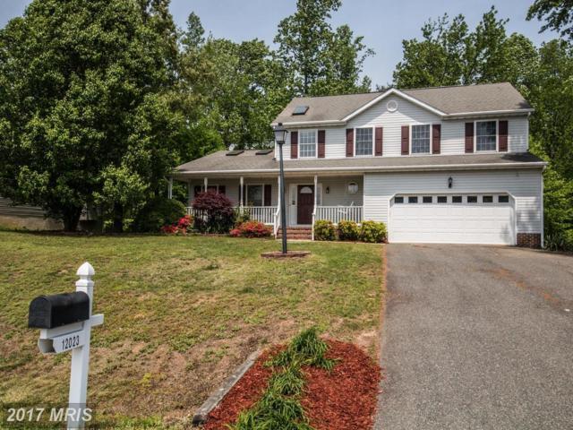 12023 Stonehenge Drive, Fredericksburg, VA 22407 (#SP10012890) :: Pearson Smith Realty