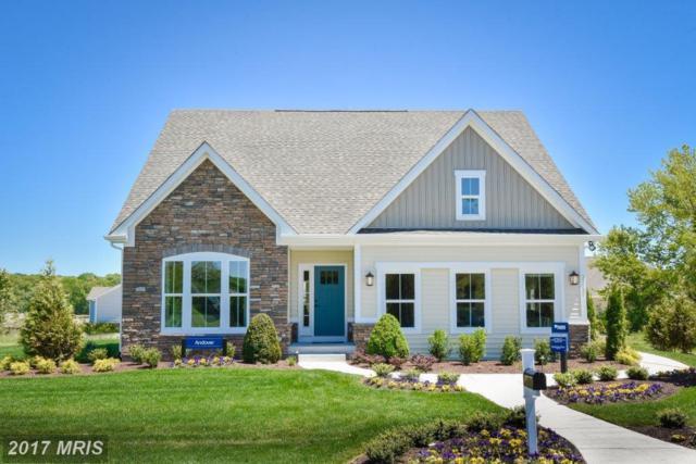 20 Piney Glade Road, Fredericksburg, VA 22407 (#SP10013007) :: Keller Williams Pat Hiban Real Estate Group