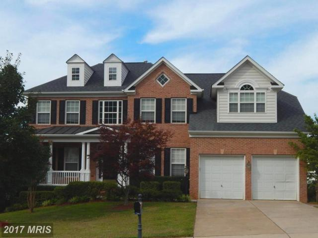 5929 Sunlight Mountain Road, Spotsylvania, VA 22553 (#SP10021338) :: Pearson Smith Realty