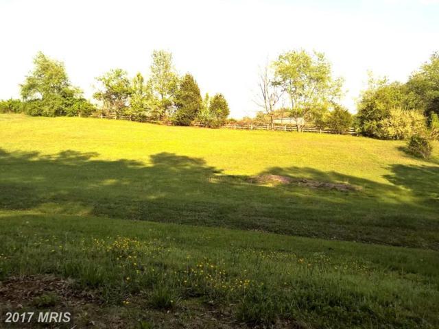 12311 Glade Drive, Fredericksburg, VA 22407 (#SP10023782) :: LoCoMusings