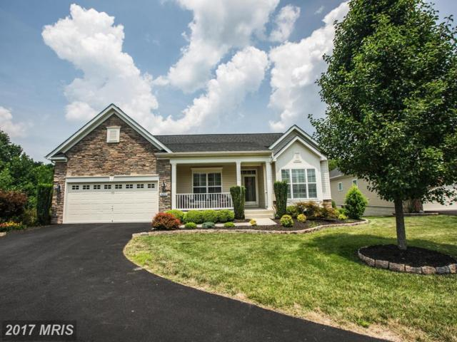 5603 Cedar Mountain Court, Fredericksburg, VA 22407 (#SP10025040) :: Pearson Smith Realty