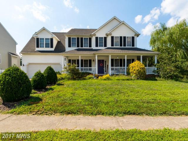 11410 River Meadows Way, Fredericksburg, VA 22408 (#SP10025046) :: Pearson Smith Realty