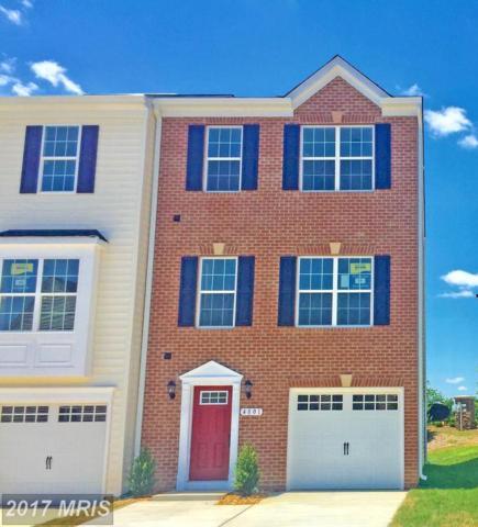 4801 Wensel Road, Fredericksburg, VA 22408 (#SP10025233) :: Pearson Smith Realty