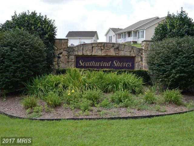 15704 Lake Lea Court, Mineral, VA 23117 (#SP10025780) :: LoCoMusings