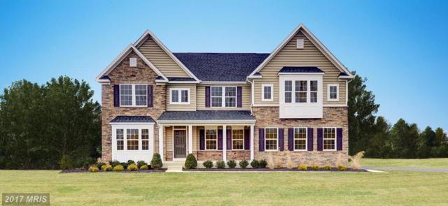 2 Hermitage Drive, Fredericksburg, VA 22407 (#SP10027499) :: Pearson Smith Realty